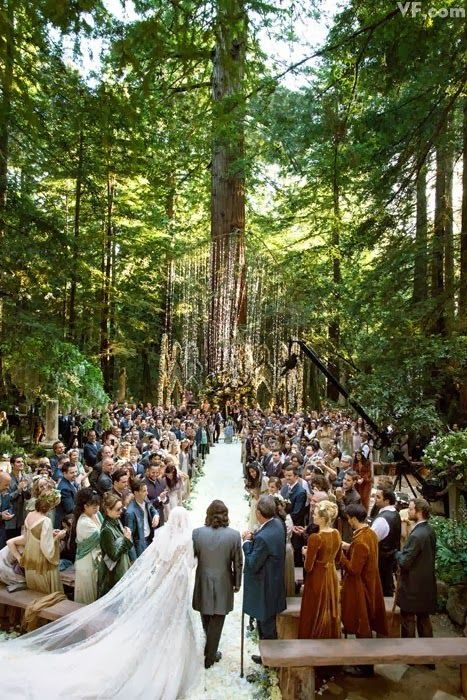 Some VIP weddings - Sean Parker's wedding in the redwoods