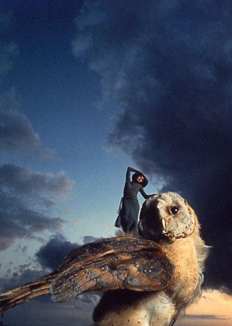 Ryszard Horowitz Photocomposer - Analog Portfolio