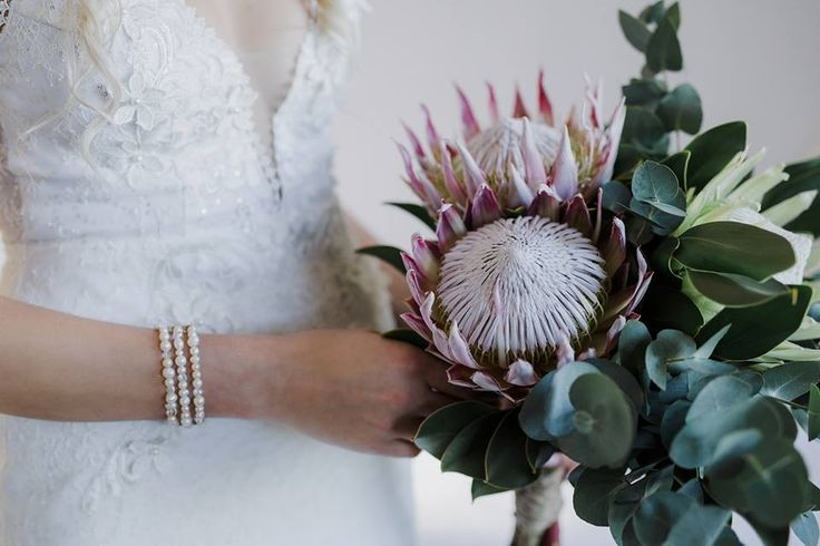 We love this beautiful protea bouquet, king proteas and a white king proteas were used with eucalyptus to create this stunner.