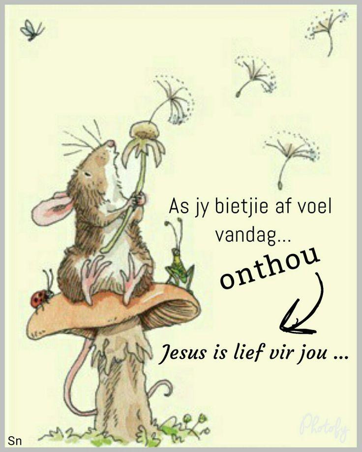 As jy ń bietjie af voel vandag, onthou Jesus is lief vir jou.
