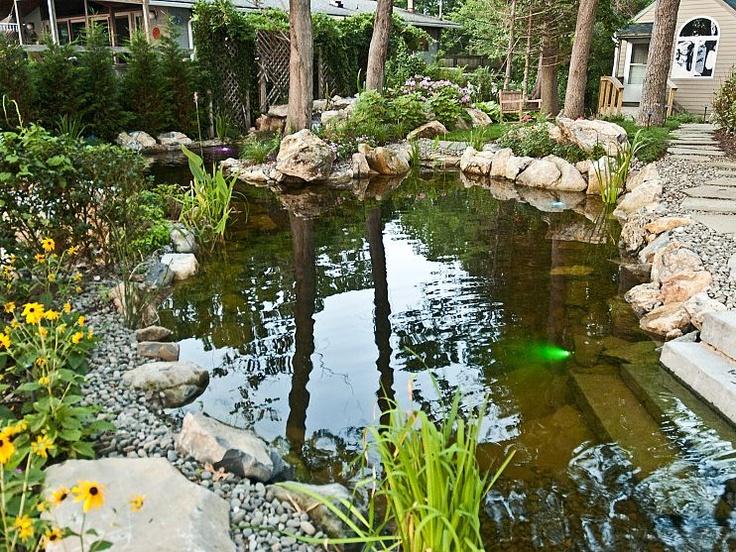 Mejores 44 im genes de pond en pinterest piscinas for Estanques naturales para jardin