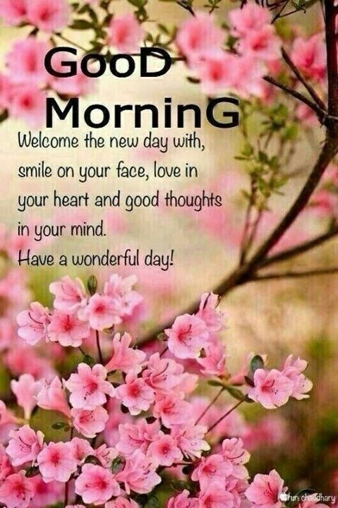 Good Morning.....Have a Happy and Blessed day All!