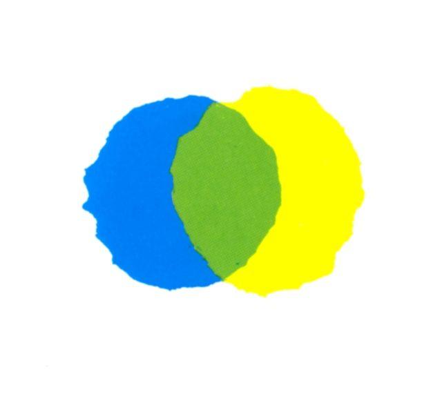 """""""si abbracciarono così forte che divennero verdi"""" Piccolo Blu e Piccolo Giallo di Leo Lionni, 1959"""