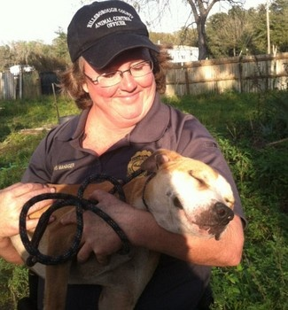 Amazing story of 26 rescued dogs from fighting ring in Florida (Photos)    RESCUE & ADOPTIONFEBRUARY 22, 2013