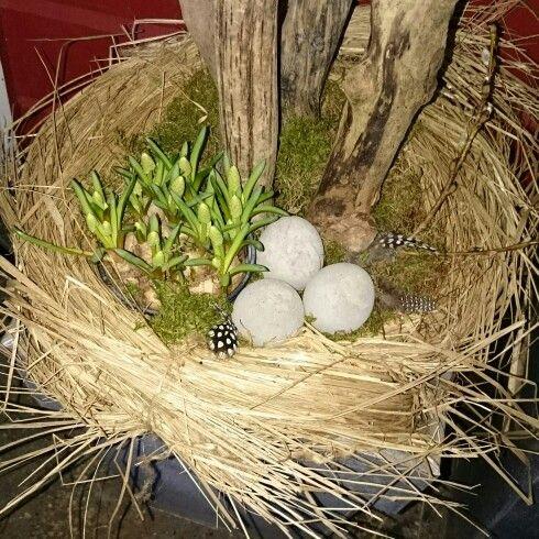 Påske, betong, egg,  snøklokker, fjær, perlene, rekved, mose, strå, easter, concrete,  feather,  diy