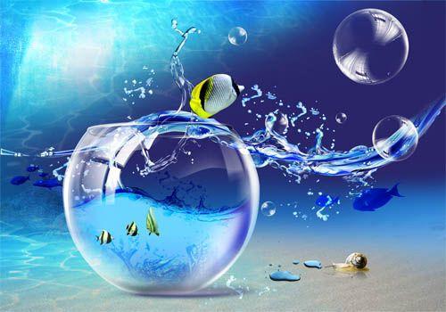 золотые рыбки в аквариуме | Аквариум, Золотая рыбка
