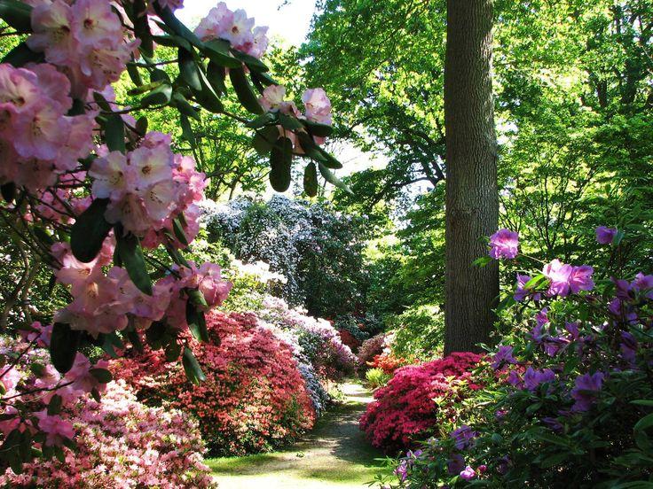 12 best UK Gardens images on Pinterest | British garden, English ...