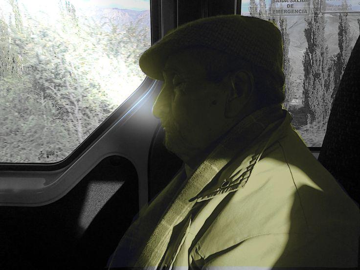 """""""Dormitando""""..... De paseo por Jujuy, en un tramo del camino...compartí viaje con este señor, quien de a ratos se permitía un descanso reparador..."""