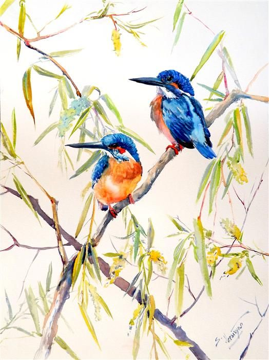 Original art for sale at kingfisher and for Watercolor art prints for sale