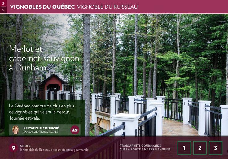 Merlot et cabernet-sauvignon àDunham - La Presse+