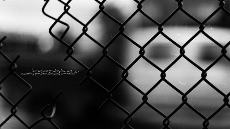 Fence Quotes Impressive Quotes Chain Link Fence Comrade Grayscale Text Quotes Wallpapers