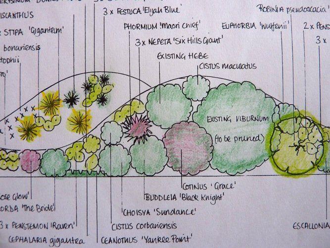114 best images about jardin de rocailles on pinterest for Dessiner plan jardin