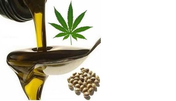 Utilizzare olio di canapa nell'alimentazione apporta degli incredibili benefici per la salute.Ecco quali http://jedasupport.altervista.org/blog/attualita/sanita/salute-sanita/olio-di-canapa-benefici-per-la-salute/