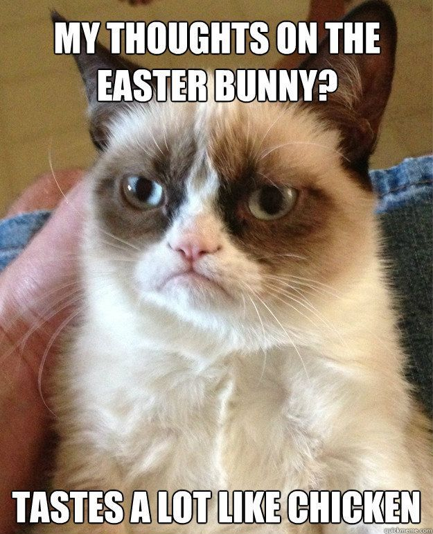 Grumpy Cat - On the Easter Bunny - brings me a basket of  baby chicks and ducklings - I might let you live.