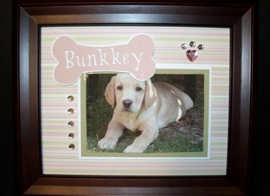 4 Gorgeous Dog Themed Picture Frames