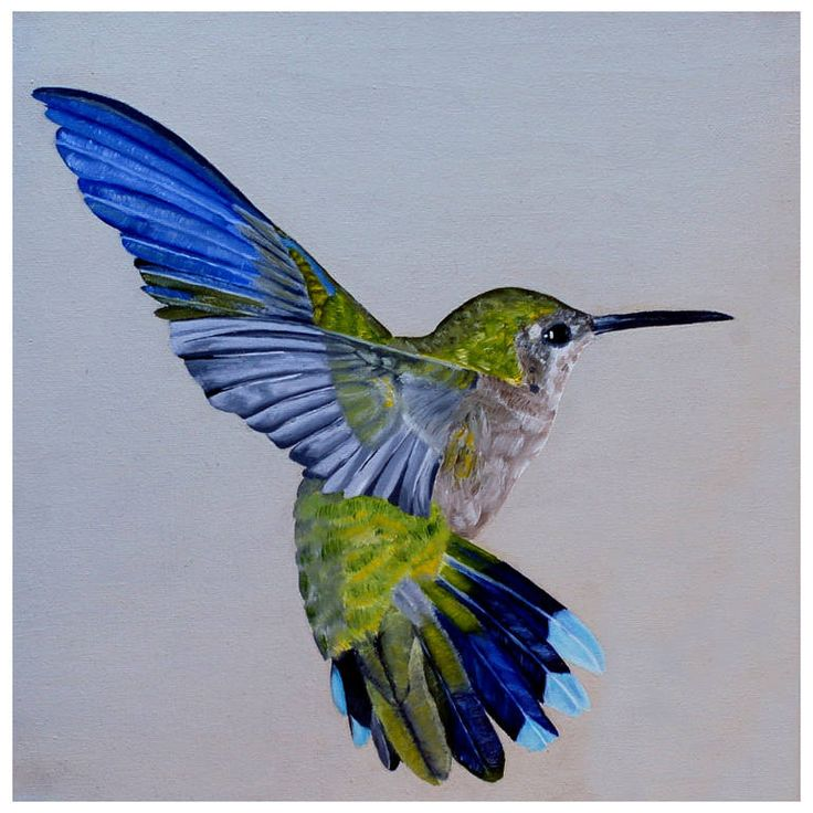 257 best images about Art - Hummingbirds on Pinterest ...