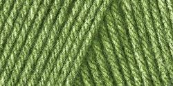 Bulk Buy Caron One Pound Yarn 2Pack Grass Green 29401010620 ** Be sure to check out this awesome product.