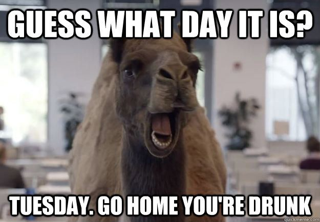 funny camel hump day pictures for facebook   what day it is? Tuesday. Go home you're drunk - Geico Camel Hump Day ...