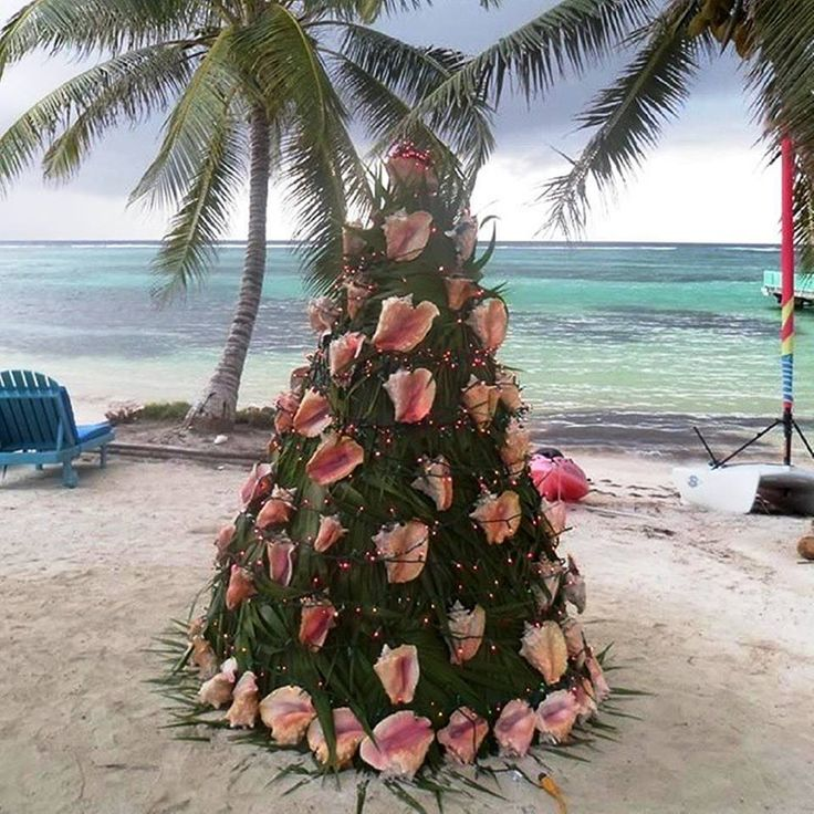 Beautiful Christmas Tree seashell decoration!!!