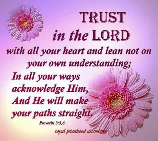 Trusting In The Lord Quotes: 17 Best Images About Devotions On Pinterest