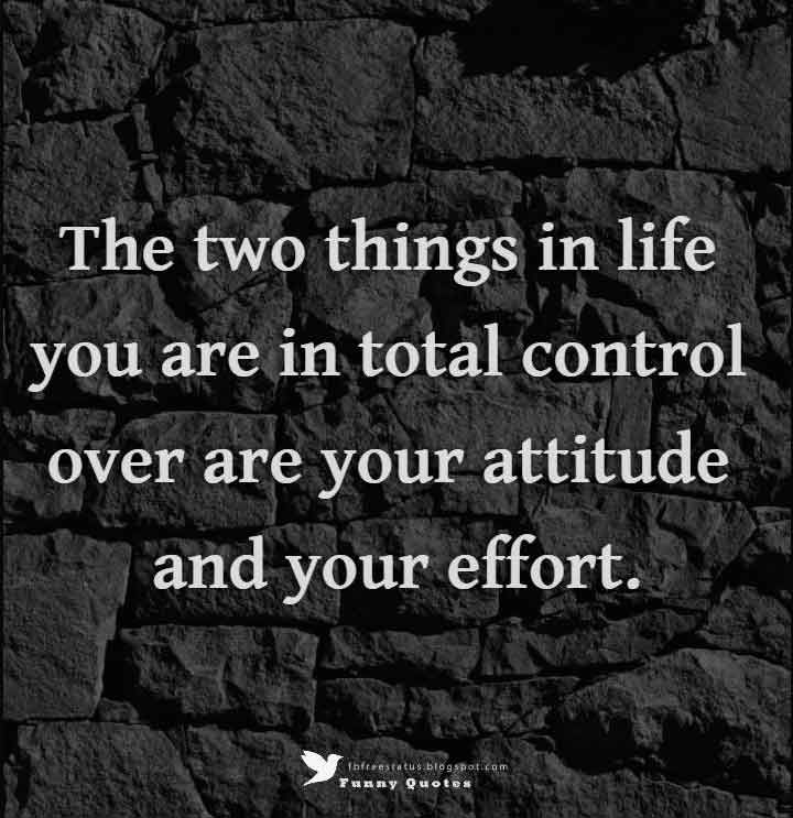 The two things in life you are in total control over are your attitude and your effort. - Billy Cox  Quotes | #MichaelLouis - www.MichaelLouis.com