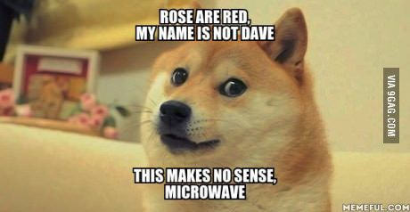 Wow. Such doge. Much poem.