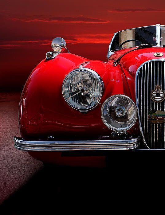 """doyoulikevintage: """" Jaguar Xk120 Sport - 1952 """""""