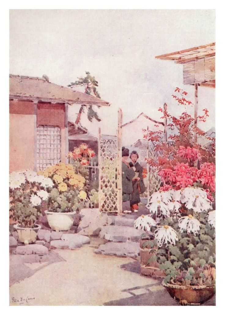 """""""Chrysanthemums, Kyoto"""" by Ella Du Cane shows how even the smallest of garden plots were lovingly tended by their owners. The owner, a fishmonger, was famed for his chrysanthemums and loved to show them off to visitors."""