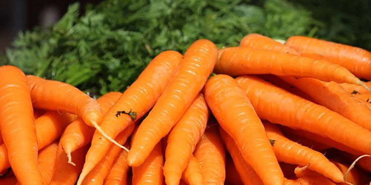 What if I told you carrots cure cancer?