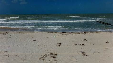 Lot or Land For Sale in Chelem Yucatan Chelem Yucatan, Yucatan. For Sale at $108,500.00. Empty Lot on the Ocean!, Chelem Yucatan.