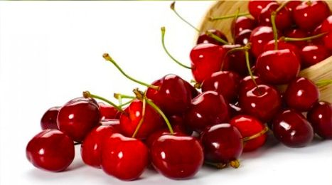 Amazing Benefits of Cherries | pharma supplier | Scoop.it