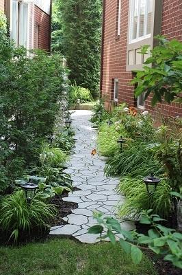 side walkway where the grass won't grow