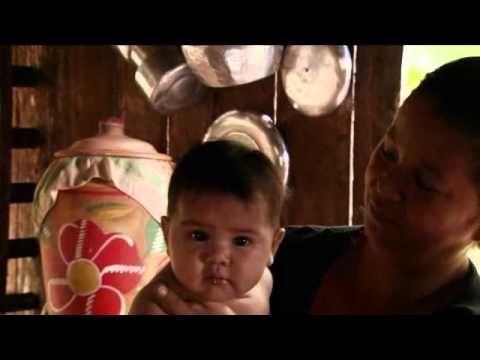 Amazonia. Cud narodzin [Seria: Szokująca Ziemia] - YouTube