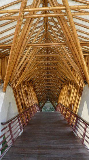 Bamboo Bridge at the The Crosswaters Ecolodge, in China a proyect by Simon Velez, a Colombian Architect, specialized in the use of Guadua.
