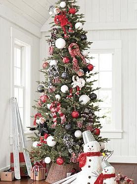 Best 25 pencil christmas tree ideas on pinterest skinny for Best looking christmas tree