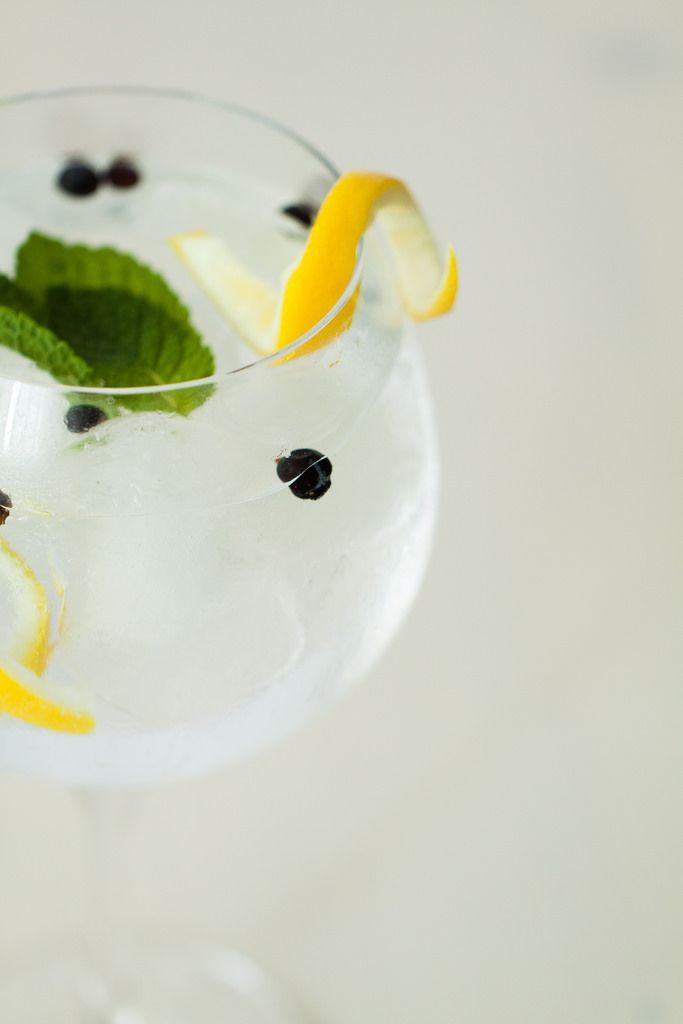 gin tonic enebro limon hierbabuena receta