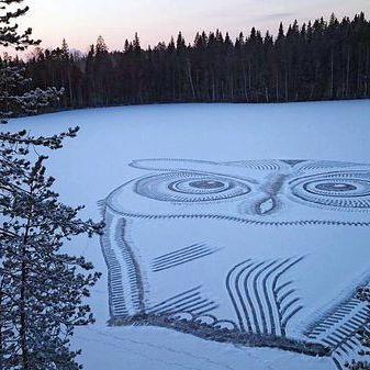 A lonely snow owl at Lake Pitkäjärvi in Lahti. Artist/photo Pasi Widgren.