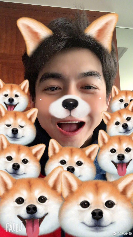 # Wang bark Wang Wang dog year line Universiade, to the New Year artifact Facue ... from Lin update - microblogging