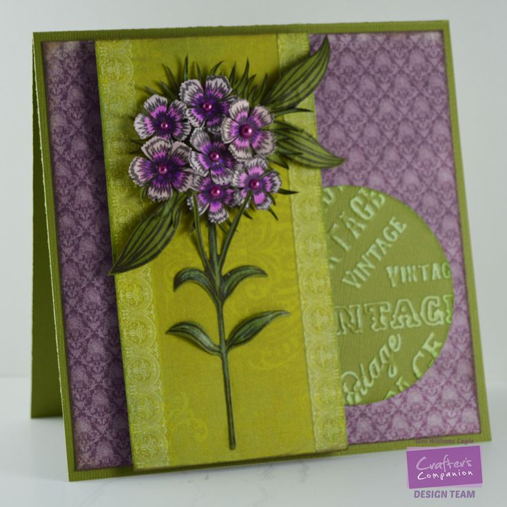 """Gini Williams designing for @CraftersCompUS Sheena Victorian Floral Release Stamp Sets Sheena Perfect Partners Victorian Floral Sweet William Set Metal Die : Sheena Perfect Partners Victorian Floral Sweet William Die Spectrum Noir Colors: PL2, PL4 Other CC Products : 8"""" X 8""""Vintage Floral Collection - Vintage Words Embossing Folder"""