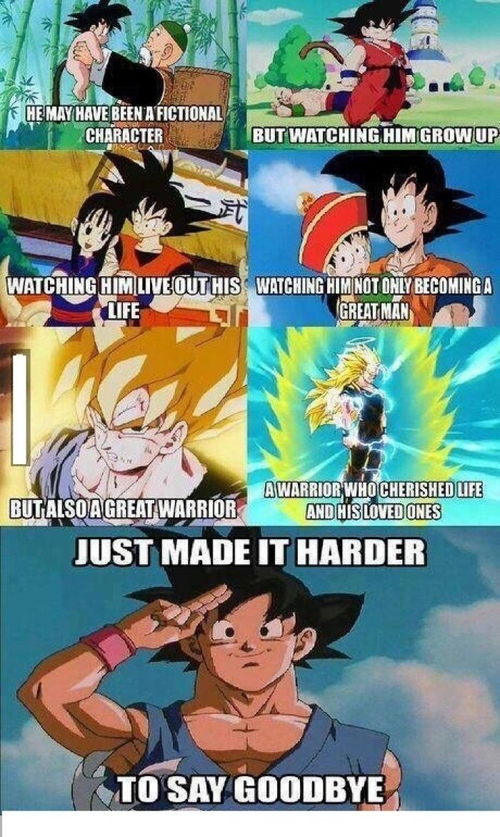 The Ultimate Kamehameha   Animales   Funny, Funny memes ...