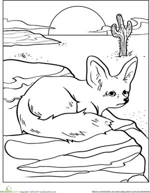 Color The Desert Fox AnimalsWestern ThemeColoring SheetsTransitional