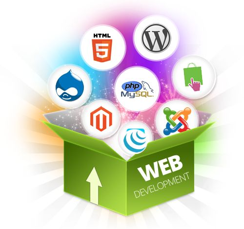 Tigermonkey Creative Provide tailored web design solutions to make your customers take notice.