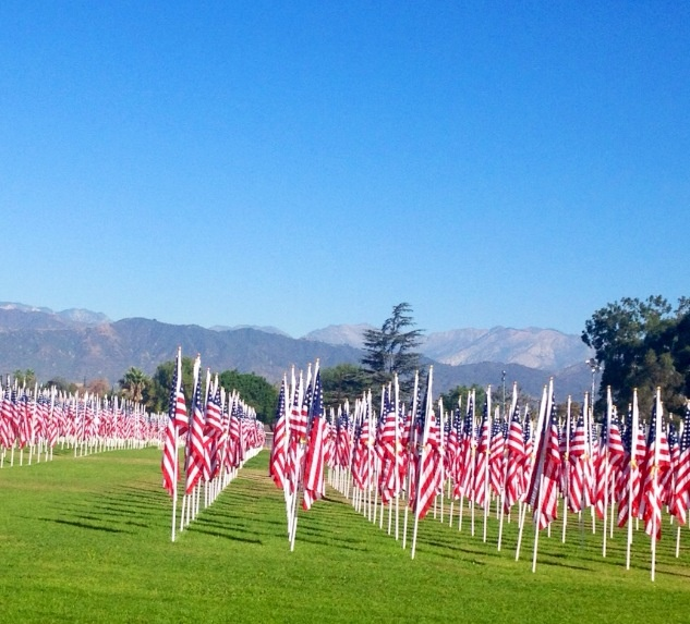 Honor &. Remember  Veterans