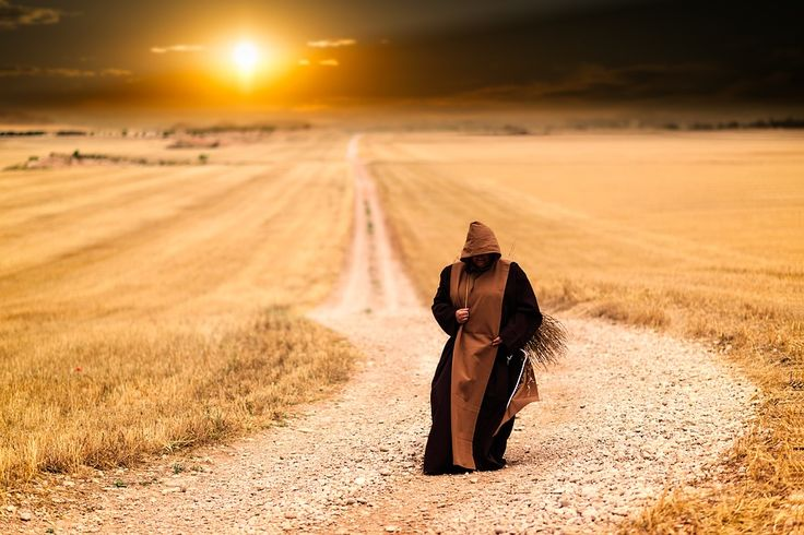 The Monk and the Scorpion: A Zen Story About the Nature of Things #Zen #Buddhism #Compassion #LovingKindness #Meditation