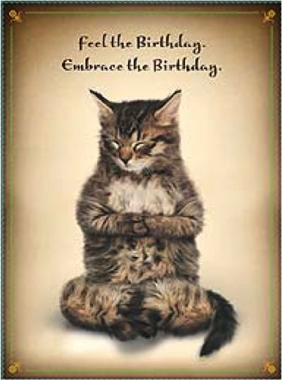 Happy birthday, yoga, cat.