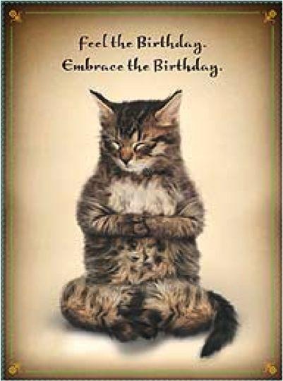 Happy birthday, yoga, cat.