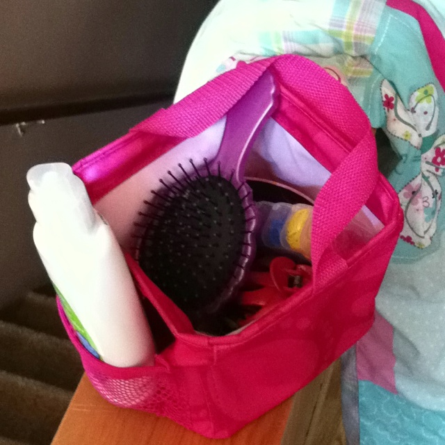 Thirty-one Littles Carry-all caddy...great for kids hair supplies! great for car for hair emergencies
