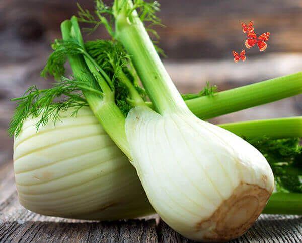 8 Benefícios do funcho e uma receita de frango grelhado