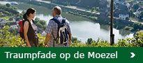 Traumpfade: Rhein-Mosel-Eifel: Traumpfade Rijn-Moezel-Eifel