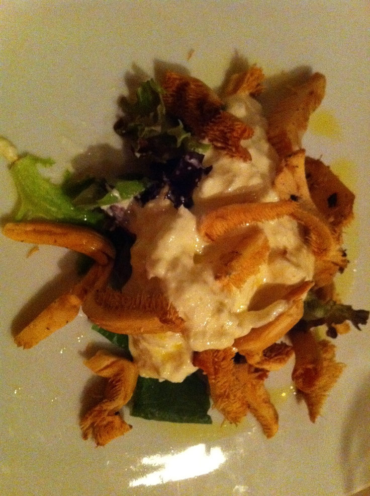 Stracciatella Mozzarella and Dried Chanterelle mushrooms @GranGusto in ...